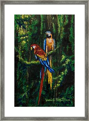 Two Macaws In The Rain Forest Framed Print by Laurie Tietjen
