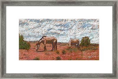 Two Mustangs Framed Print by Suzie Majikol Maier