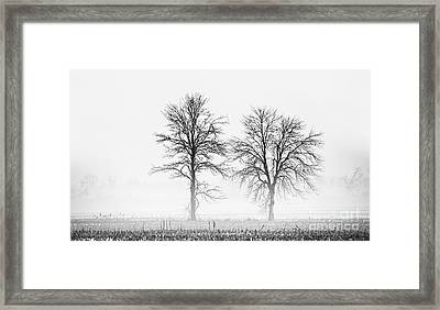 Framed Print featuring the photograph Two... by Nina Stavlund