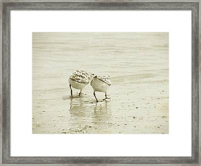 Two Of A Kind Framed Print by JAMART Photography