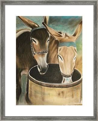 Two Of A Kind Framed Print by Scott Easom