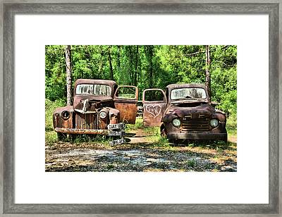 Two Old Dogs Framed Print