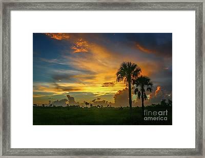 Two Palm Silhouette Sunrise Framed Print
