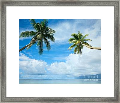 Two Palms, Turquoise Water Framed Print by Mitch Warner - Printscapes