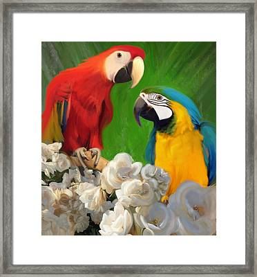 Two Parrots And White Roses Framed Print by Julianne  Ososke