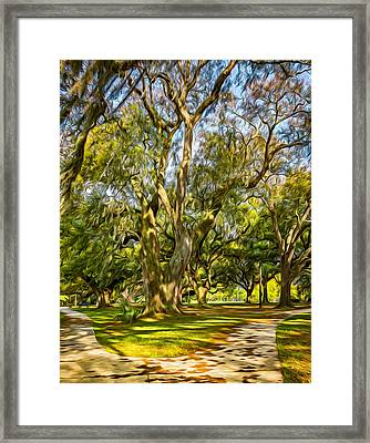 Two Paths Diverged In A Live Oak Wood 2 - Paint Framed Print