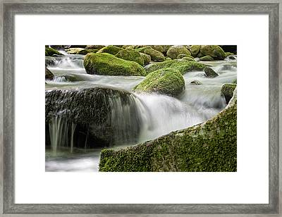 Two Paths Same Destination Framed Print
