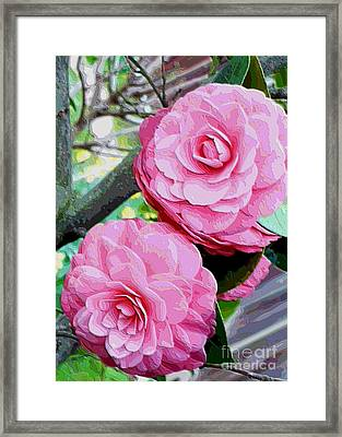 Two Pink Camellias - Digital Art Framed Print by Carol Groenen