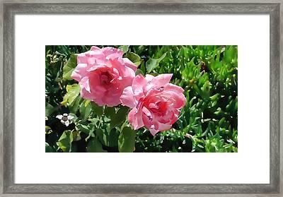 Two Pink Roses Version 1 Framed Print