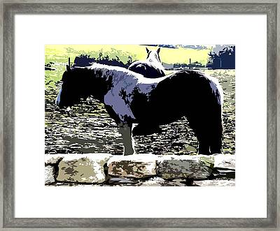 Two Ponies Framed Print
