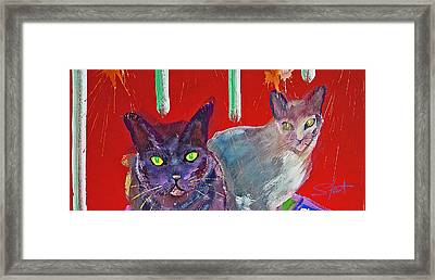 Two Posh Cats Framed Print