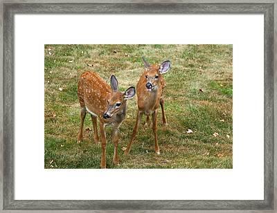 Two Precious Framed Print