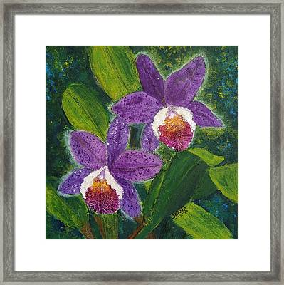 Two Purple Cattleyas Orchids Framed Print by Jean L Fassina