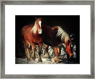 Two Red Horses  Framed Print by Georgiana Romanovna