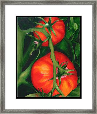 Two Red Tomatoes Framed Print by Pepe Romero