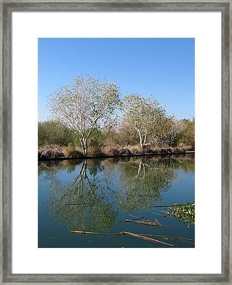 Framed Print featuring the photograph Two Reflected by Laurel Powell