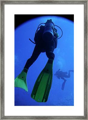 Two Scuba Divers Swimming Framed Print by Sami Sarkis
