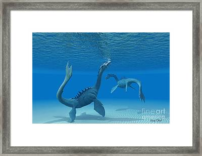 Two Sea Dragons Framed Print by Corey Ford