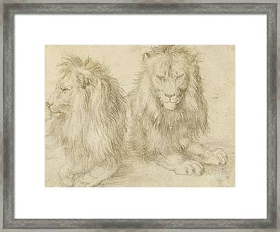Two Seated Lions Framed Print