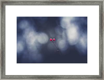 Framed Print featuring the photograph two by Shane Holsclaw