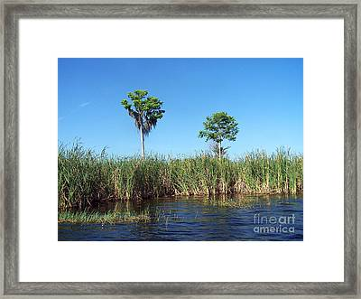 Two Sisters Framed Print by Jack Norton