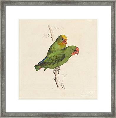 Two Small Green Birds Hand Framed Print
