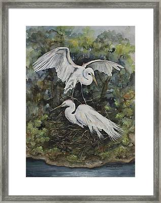 Two Snowy Egrets Framed Print by Laurie Tietjen