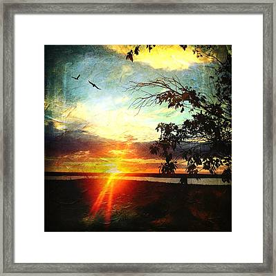 Two Souls Flying Off Into The Sunset  Framed Print by Debra Martz