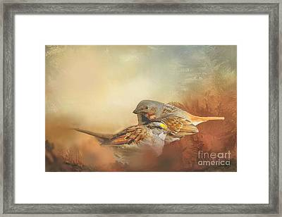 Sparrows In The Marsh 2 Framed Print by Janette Boyd