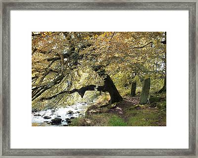 Two Standing Stones Beside Hebden Water In Autumn  Framed Print