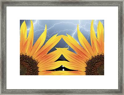 Two Sunflower Lightning Storm Framed Print by James BO  Insogna