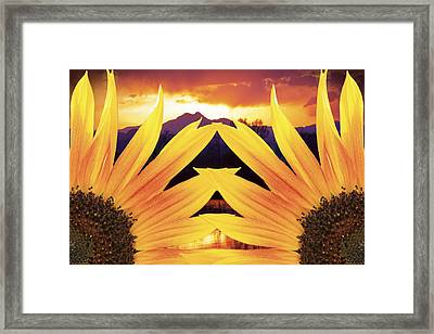 Two Sunflower Sunset Framed Print by James BO  Insogna