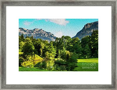 Two Swans A Swimming Framed Print