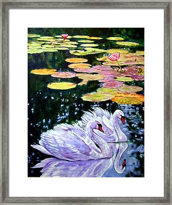 Two Swans In The Lilies Framed Print by John Lautermilch