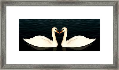 Two Symmetrical White Love Swans Framed Print