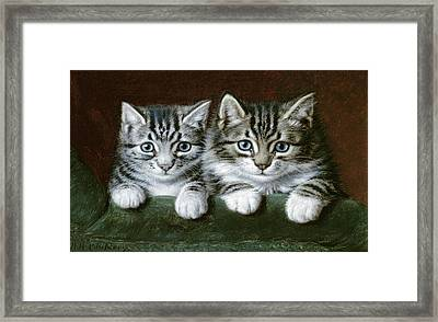 Two Tabby Kittens  Framed Print by Horatio Henry Couldery