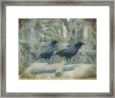 Two Tombstone Crows Framed Print by Gothicrow Images
