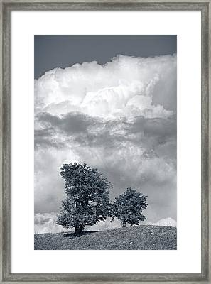 Two Trees #9249 Framed Print by Andrey Godyaykin