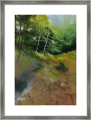 Two Trees In Light Framed Print by Harry Robertson