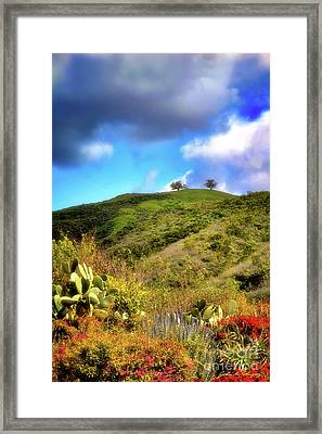 Two Trees In Spring Framed Print