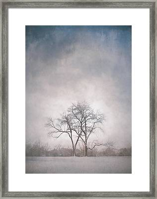 Two Trees Framed Print