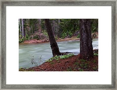 Two Trees Where The River Bends Framed Print by Jeff Swan