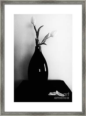 Two Tulips Framed Print by Lisa McStamp