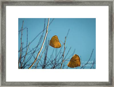 Framed Print featuring the photograph Two Warriors  by Ana V Ramirez