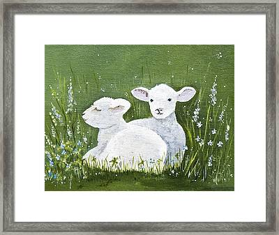 Two Wee Sheep Framed Print by Virginia McLaren