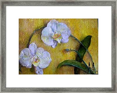 Two White Orchids Framed Print by Carol P Kingsley