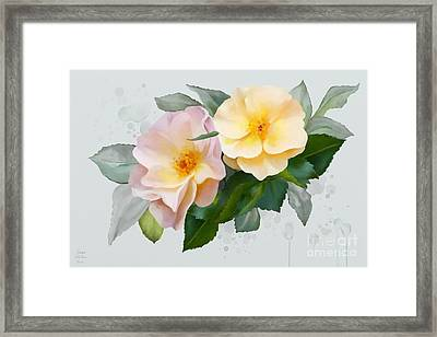 Two Wild Roses Framed Print by Ivana Westin