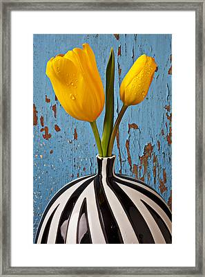 Two Yellow Tulips Framed Print by Garry Gay
