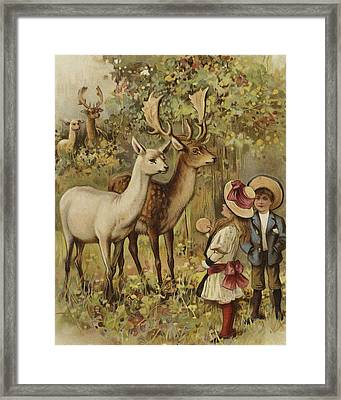 Two Young Children Feeding The Deer In A Park Framed Print by English School