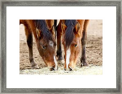 Two Young Friends Framed Print